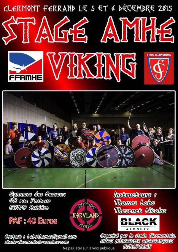 Stage AMHE Vikings
